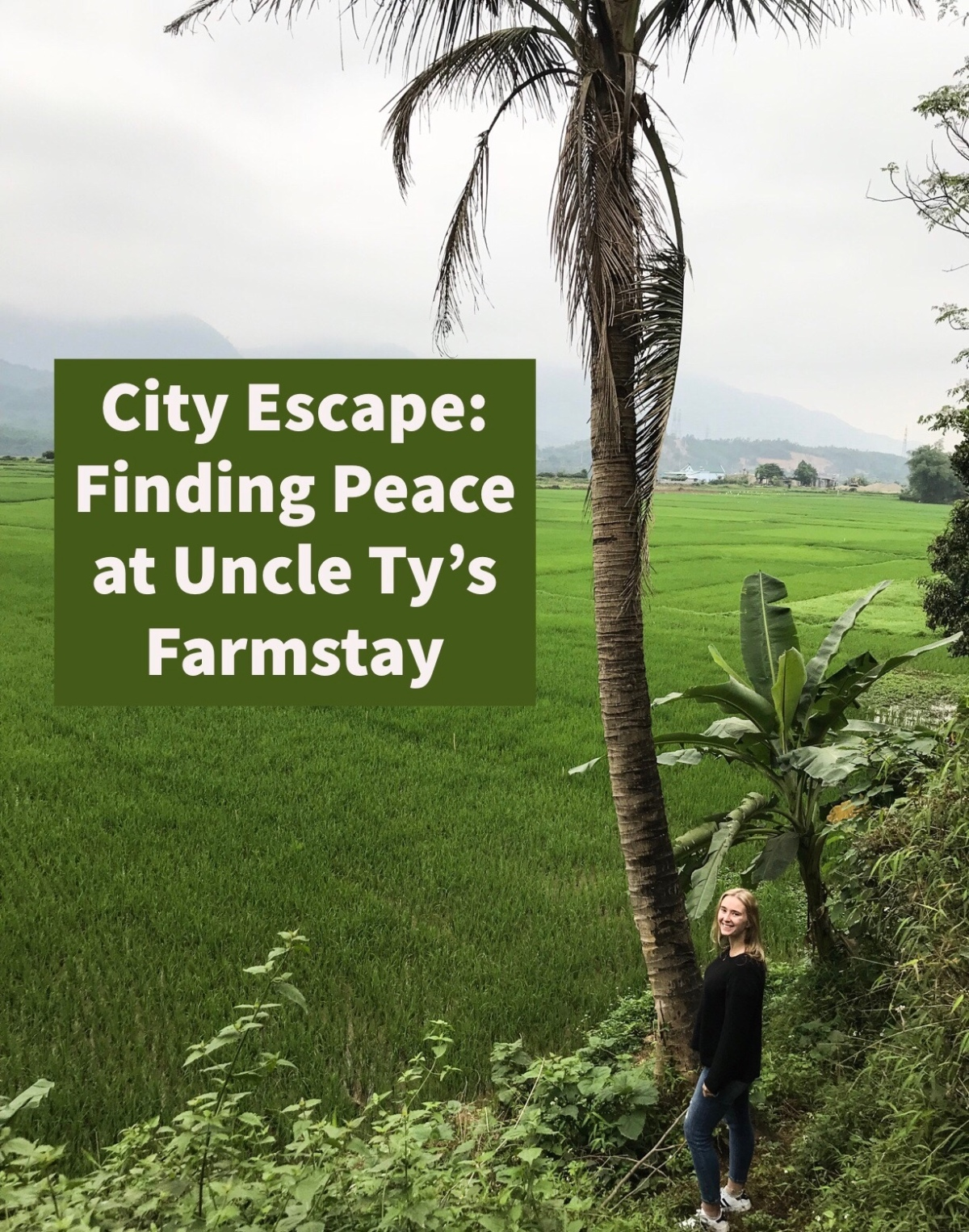 City Escape: Finding the Peace at Uncle Ty'sFarmstay